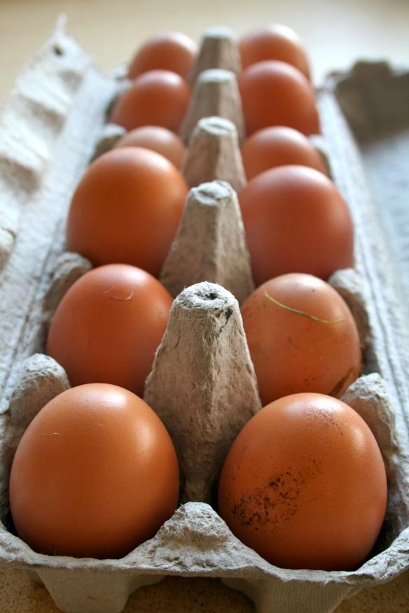 Egg supply
