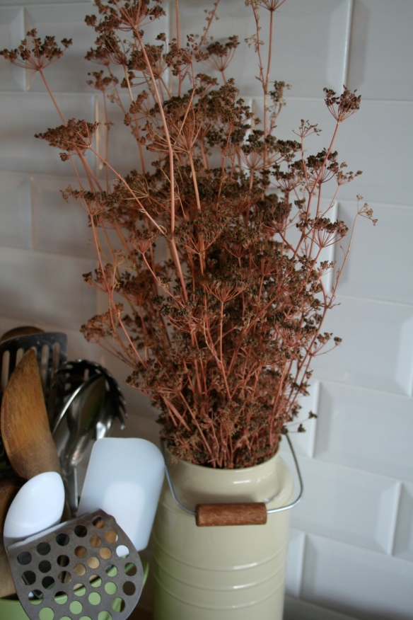 Drying parsley seed heads