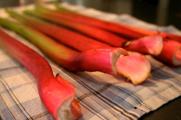 Rhubarb stalks, 6
