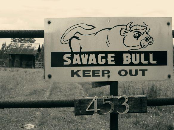 bull gate