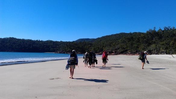 Beach walking again