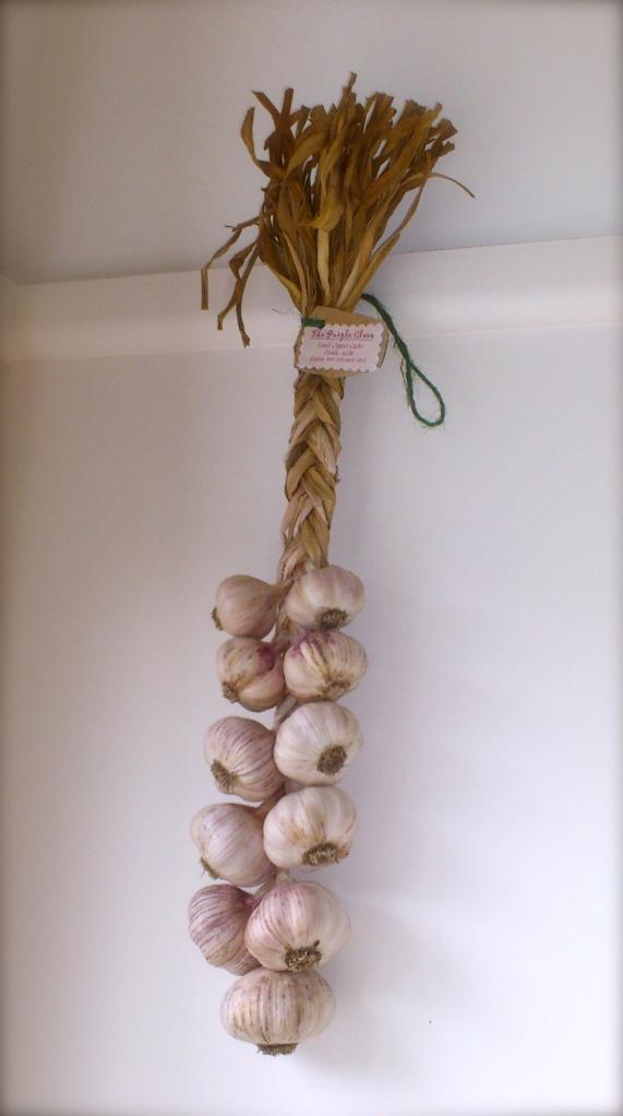 Kim's garlic