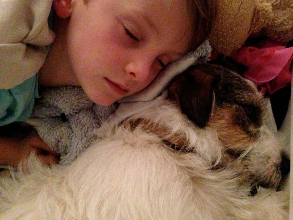 Jack Russell Terrier and Boy